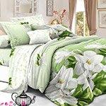 Комплект постельного белья из полисатина 118-PS Cleo